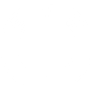bmw logo white
